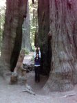 Eureka_trip_July_2009_030.jpg